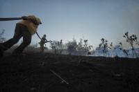sındırgıda orman yangını (1)