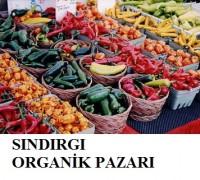 Sındırgı'da organik pazar (1)