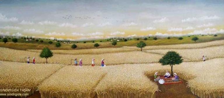 İzzettin Köyü Esnaf ve Zanaatkârları